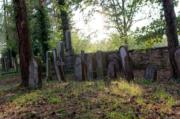 2018/09/28 Židovský hřbitov Trhový Štěpánov